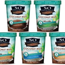 So Delicious Coconut Milk Frozen Desserts, The Best Holiday Treat!