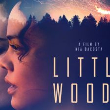 LITTLE WOODS Starring Tessa Thompson in theaters April 19, 2019